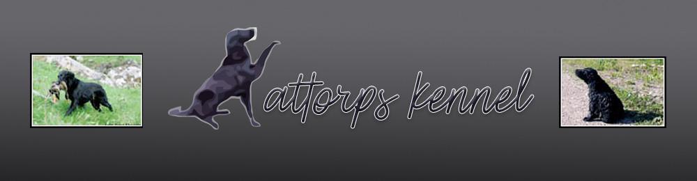 Kattorps